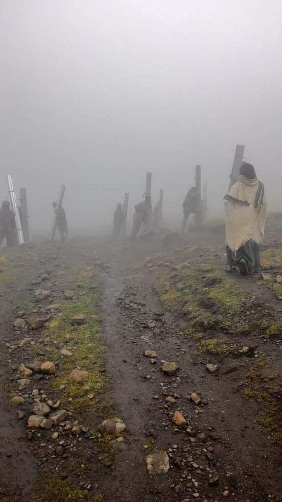 Transport de matériaux à dos d'homme. Parc National du Simien ethiopie
